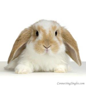 Some bunny who cares ecard