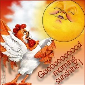 Good morning greetings ecard m4hsunfo