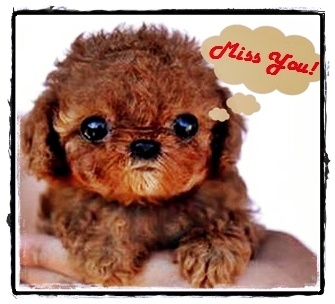Miss you (cute one) ^_^ ecard