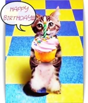 HappY Birthday Cute Cat Cup Cake ECard