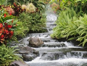 waterfalls ecard