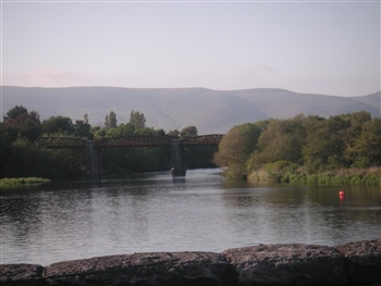 our bridge ecard