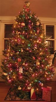 Holiday Greetings! ecard