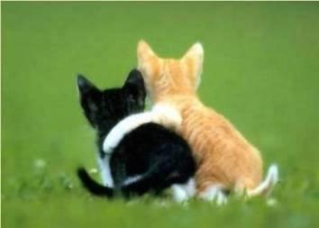 Good friends ecard