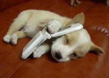 Call Me... ecard