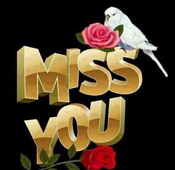 why do u miss me