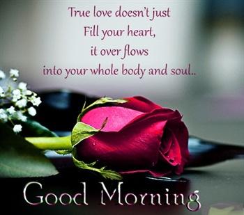 Turly Lovingly, Good Morning ecard