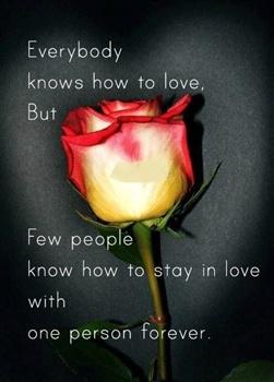 Stay in Love ecard