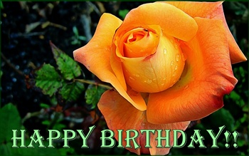 Happy Birthday. ecard