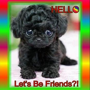 Hello.... ecard