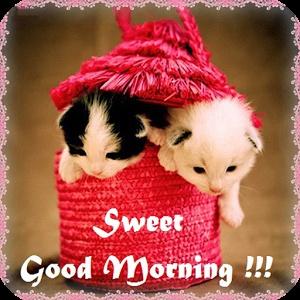 Sweet Good Morning! ecard