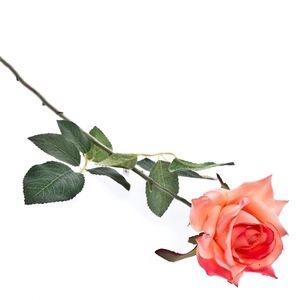 the rose speaks of love ecard