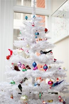 Its December ecard