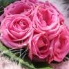 Flowers eCard