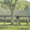 Haus Tambaran Sepik PNG