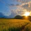 A Beautifull sunset