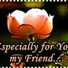 for u my friend