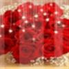 RED ROSE eCard
