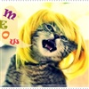 Meow eCard