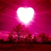 Love begins again at heavens gate