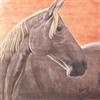 Friendship Horse