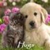 hugs eCard