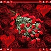 Roses of red grow in my heart