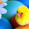 Wonderful Time of Easter