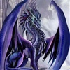 one of my many dragon pics eCard