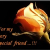 4 my very special friend...