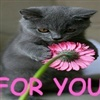 is for you