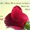 Like a ROSE…