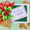 At Christmas eCard