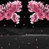 Let blessings fall like blossoms