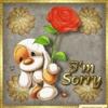 cute-sorry
