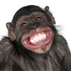 Keep smiling eCard