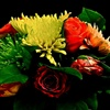Fleurs Pours Vous eCard