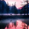 Deer Lake eCard