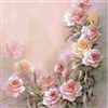 misty roses eCard