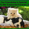 Our Friendship Is Special eCard
