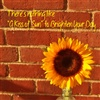 A Little Sunshine to Brighten Your Day eCard