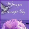 Wishing you a beautiful day eCard