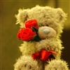 A hug flower for you