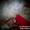 White Christmas eCard